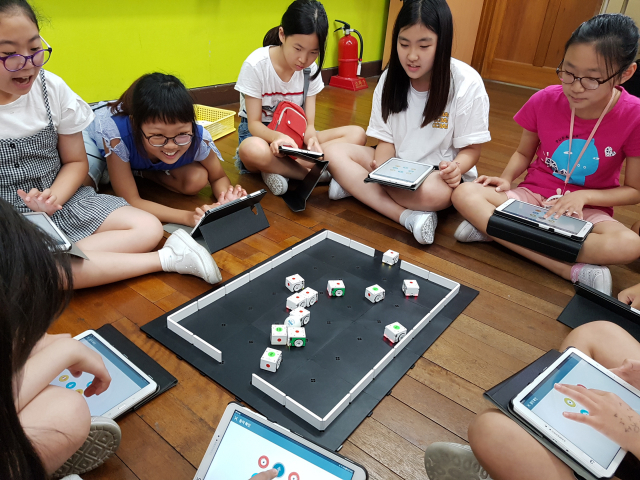 SW 교육중심 행복학교인 대구 팔달초 학생들이 학년별 로봇동아리를 통해 코딩, 알고리즘 등을 이해하고 있다. 팔달초 제공