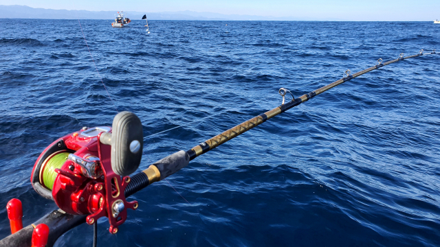 동해 대구 지깅낚시 채비는 허리힘이 강하고 전체적으로 휨새가 뻣뻣한 낚싯대가 필요하다.