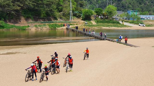 회룡포의 속살을 보기위해 일행들이 뿅뿅다리를 건너고 있다.