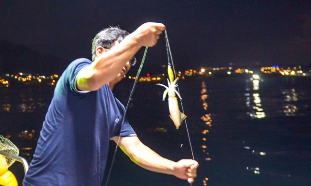 야간 한치낚시 체험. 제주의 운치 있는 밤바다 풍경과 함께 짜릿한 손맛까지 경험할 수 있다. 사진=제주일보 고봉수 기자 chkbs9898@jejunews.com