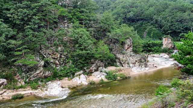 세평하늘길은 계곡과 물,나무 등이 길동무가 되어 주는 첩첩산중이다.
