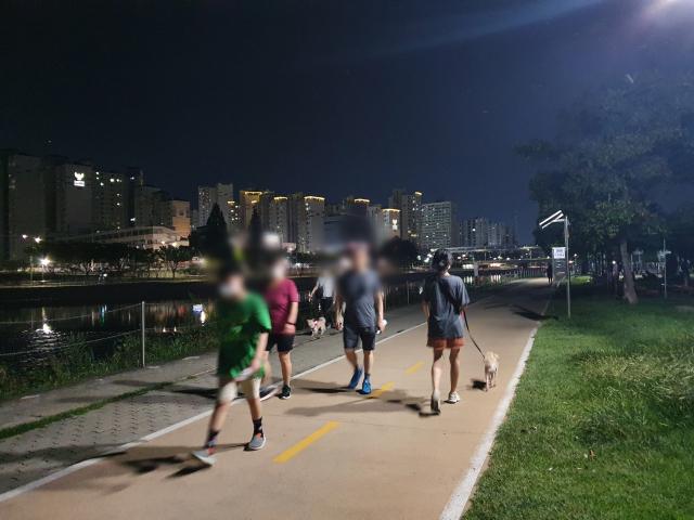 3일 오후 8시쯤 대구 신천 강변 산책로에 반려견을 동반한 시민들이 산책을 하고 있다. 배주현 기자
