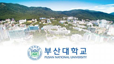'조민 입학취소한 부산대 규탄' 국민청원에 靑답변