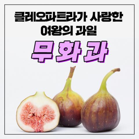 [카드뉴스] 클레오파트라가 사랑한 여왕의 과일 '무화과'