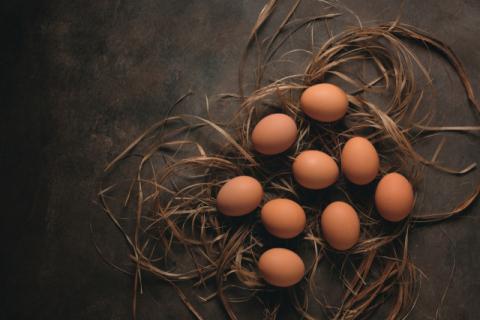 '잠깐!'…전(煎) 부칠 때 계란 만졌다면 손부터 씻으세요