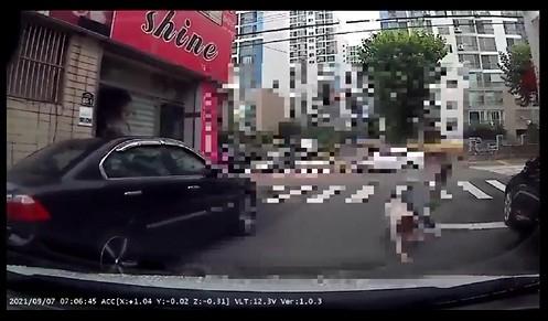 A씨가 공개한 사고 당시 블랙박스 영상. 보배드림 캡쳐