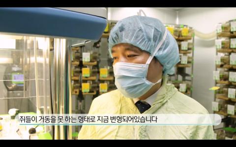 [TV] 치주 질환 유발하는 세균과 전신 건강 관계