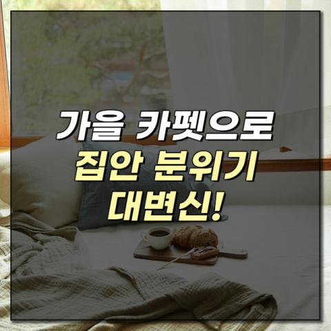 [카드뉴스] 가을 카펫으로 집안 분위기 대변신!