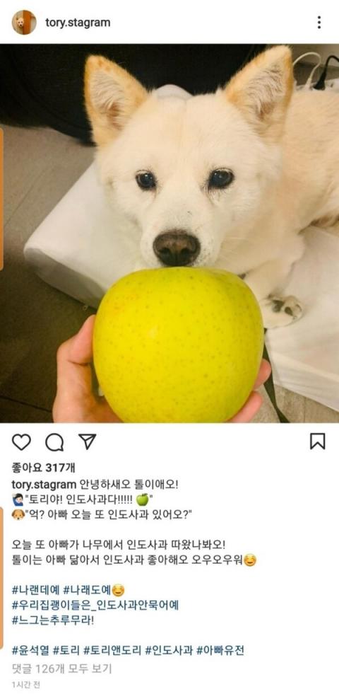 '사과는 개나 줘라?'…윤석열, 또 SNS에 사과 사진 공유